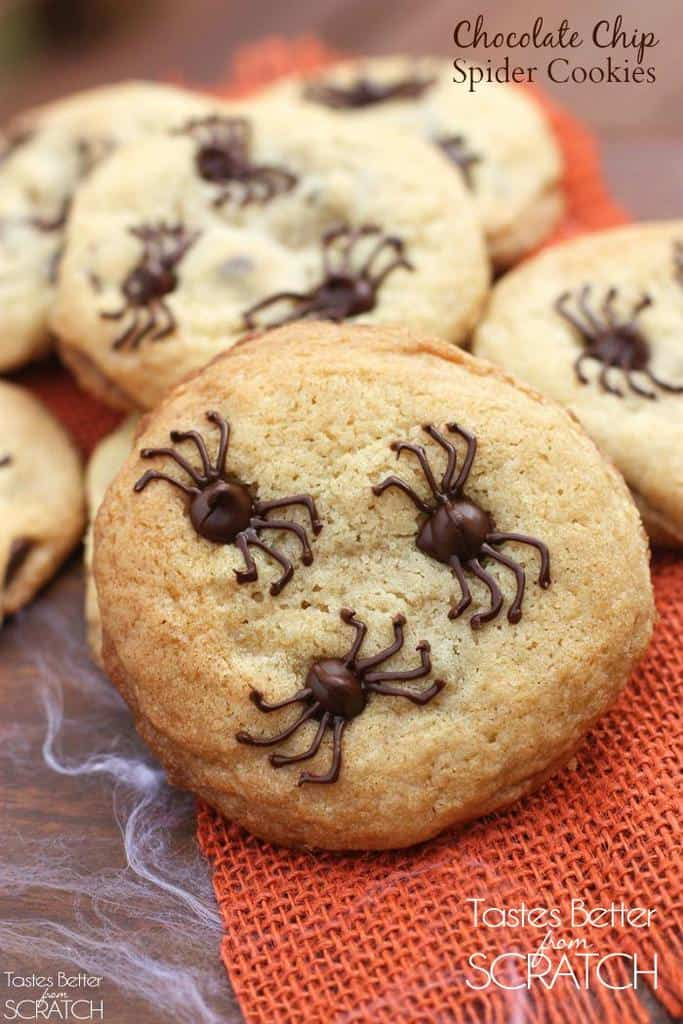 Chocolate Chip Spider Cookies